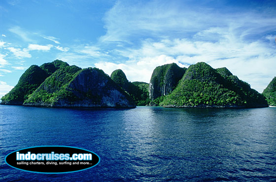 The Best Raja Ampat